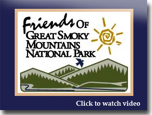 Link to video for friends of the smokies