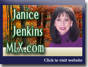 Link to website for Janice Jenkins realtor