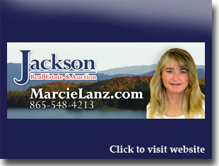 Link to website for Marcie Lanz realtor