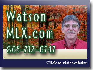 Link to website for Sammy Watson realtor